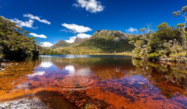 Atrakcje Australii - dziewicza Tasmania