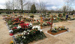 Ofiar COVID-19 w Polsce jest znacznie więcej? Niepokojąca analiza amerykańskich naukowców