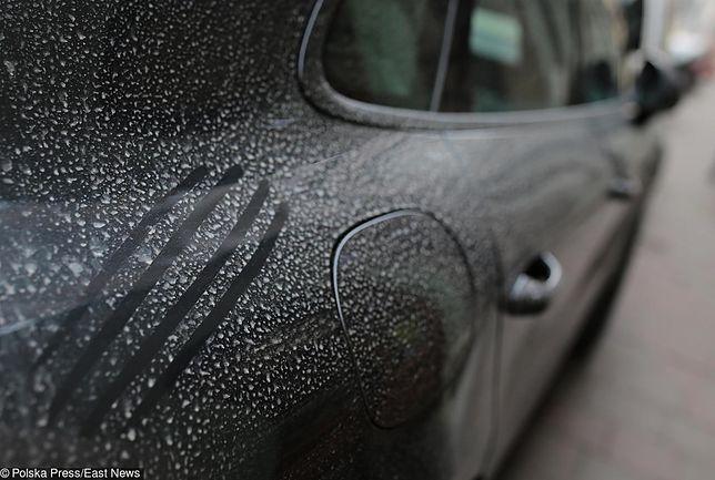 Saharyjski pył osiada na maskach samochodów