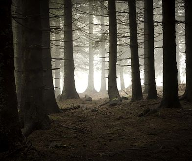 Straszne miejsca, w których można nakręcić horrory