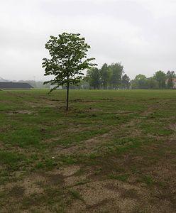 Bielsko-Biała. Czesi wyburzyli elektrownię. Zamiast kominów, będą drzewa