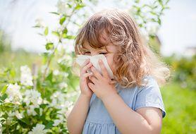 Katar alergiczny - co robić?
