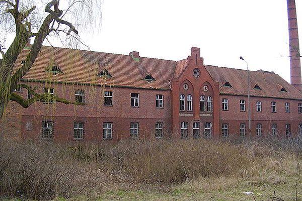 Nowi świadkowie ws. mordowania pacjentów szpitala w Owińskach w 1939 roku