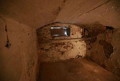 Szczątki ludzkie odnalezione na terenie b. aresztu NKWD i UB w Płocku