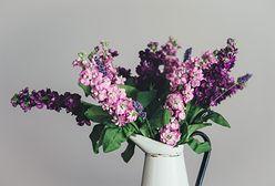 Bukiet kwiatów dłużej postoi. Wypróbuj 5 sposobów