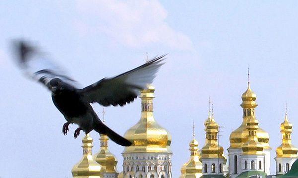 MSW ostrzega przed zamachem terrorystycznym na Ukrainie w dniu otwarcia igrzysk w Soczi