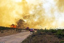 Portugalia. Pożar w Algarve dotarł do kurortów. Spłonęło 10 tys. ha lasów i nieużytków