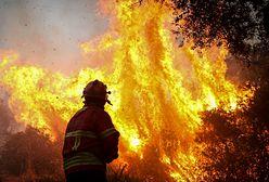 Pożary w Portugalii. Ogień zagraża kurortom w Algarve