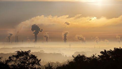 Kanarek ostrzega przed smogiem, informuje o jakości powietrza w Twojej okolicy