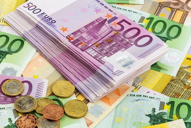 Euro dla Polaków? Mamy najnowszy sondaż