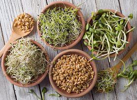 Kiełki brokułu - wartości odżywcze, właściwości, jak je hodować