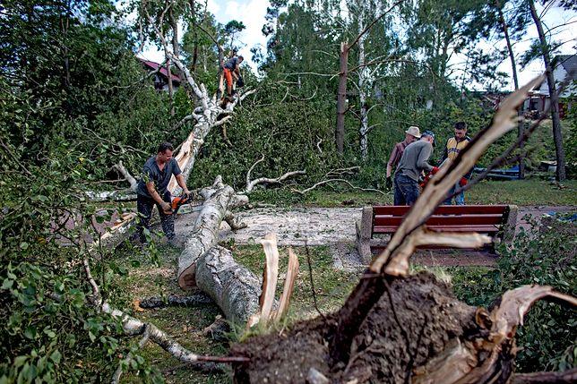 Powalone drzewa i pozrywane dachy to największe problemy, z którymi muszą uporać się mieszkańcy Rytla po nawałnicach sprzed kilku dni