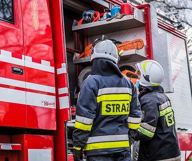 Zdjęcie ilustrujące strażaków podczas pożaru