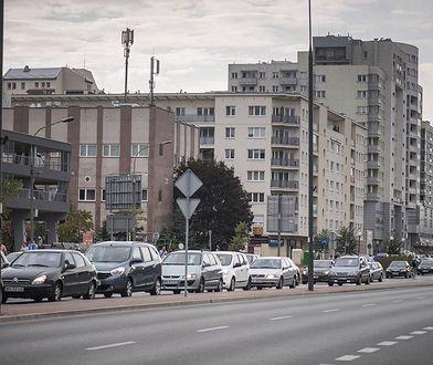 """Burmistrz Woli nie chce drzew przy ulicy, bo """"powodują ciemność na chodnikach"""""""