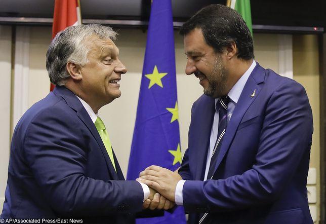 Matteo Salvini chce wraz z Viktorem Orbanem i Jarosławem Kaczyńskim przeciwstawić się dominacji Niemców w UE