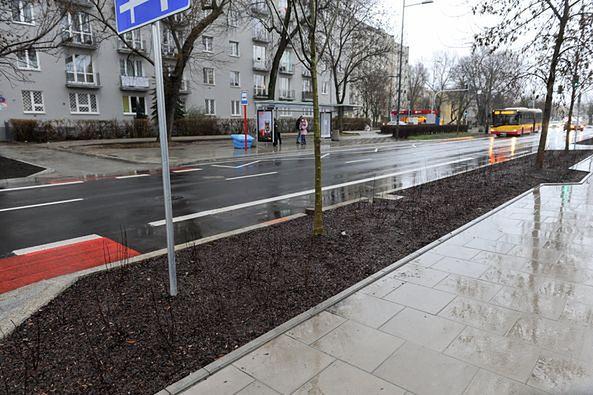 Warszawa. Ulica Saska zachwyci nas na wiosnę bujną zielenią. Posadzono tu 8 tysięcy rośln - krewów, bylin i drzew. Te ostatnie mogą urosnąć z czasem do wysokości ośmiu metrów