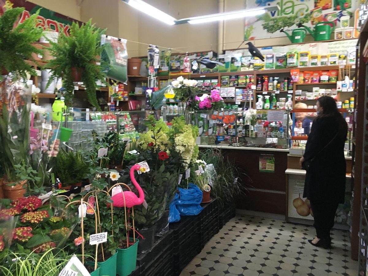 """Warszawski sklep ogrodniczy """"U Jadzi"""" przy ul. Bagatela 13. Każdy znajdzie tu coś ciekawego"""
