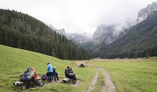 Turyści zostawiają małpki w Tatrach
