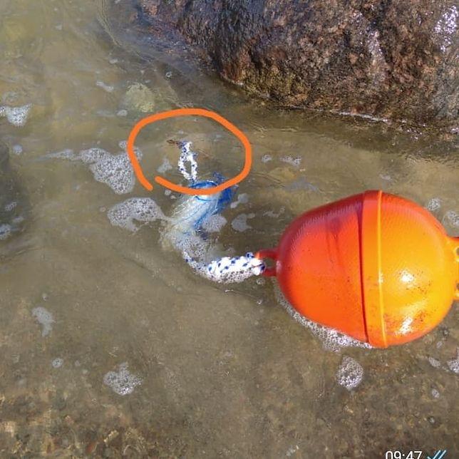 Kołobrzeg. Metalowy pręt, przez który zraniła się w lipcu turystka z Białegostoku. Kobieta trafiła na SOR
