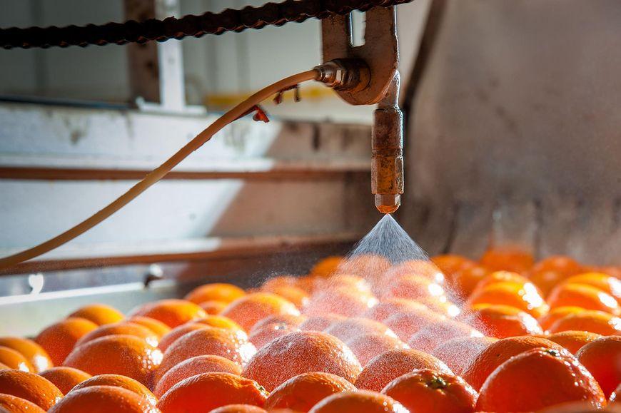 Pestycydy i wosk na owocach