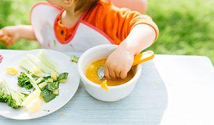 Czym jest schemat żywienia niemowląt i co warto wiedzieć, planując rozszerzanie diety niemowlaka?