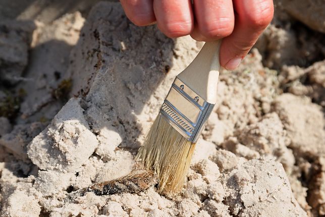 Archeologowie odkryli ślady pełnego osiedla z zabudowaniami i drogami