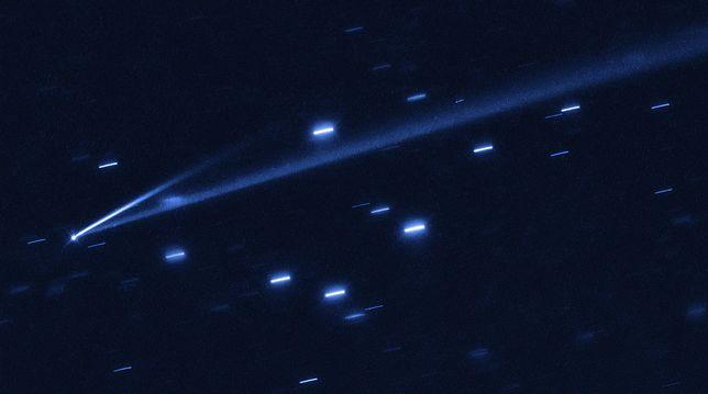 Nowo odkryta asteroida Gault