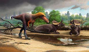 Prawdopodobnie tak mógł wyglądać przodek T-rexa