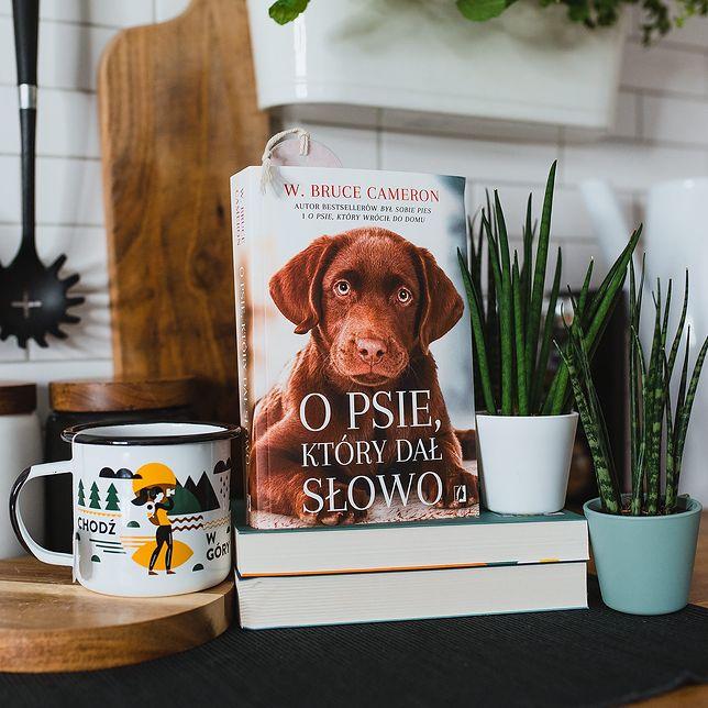O psie, który dał słowo - zakochaj się w rozmerdanej opowieści