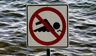 Sinice nie są już problemem w Bałtyku, ale zagrożenie zdrowia wciąż istnieje