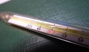 Jak wybrać najlepszy termometr?