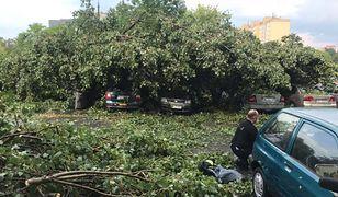 Deszcz, burza i nawałnice nad Polską. Ogromne zniszczenia, około trzech tysięcy odbiorców bez prądu