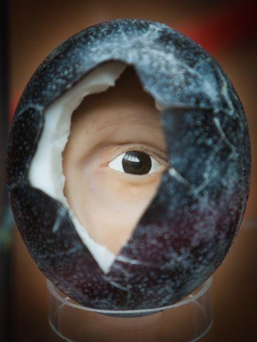 Ludzkie oko w jajku - zdjęcia