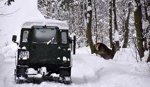 W Polsce prawdziwa zima. Na drogach i w górach niebezpiecznie