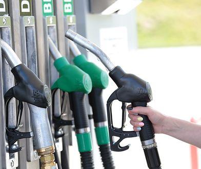 Zniżka na paliwo dla dużych rodzin. Nawet seniorzy tankują taniej