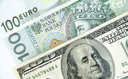 Złoty mocny wobec euro, ale względem dolara osłabił się