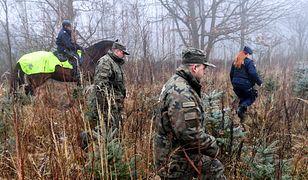"""Akcja """"CHOINKA-18"""" w miejscowości Glinna. Policjanci i strażnicy leśni patrolują lasy. Wszystko, by złodzieje drzewek nie pozostali bezkarni"""