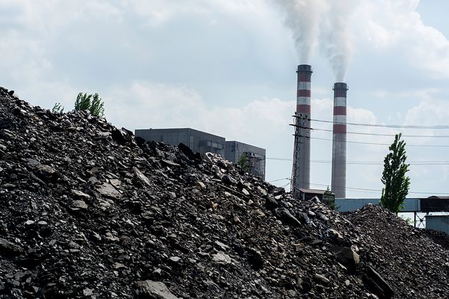 Węgiel – to za przywiązanie do niego dostaliśmy antynagrodę