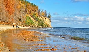 Klif w Orłowie to jedno z najczęściej odwiedzanych miejsc w Trójmieście. Niestety jego fragment osunął się na plażę