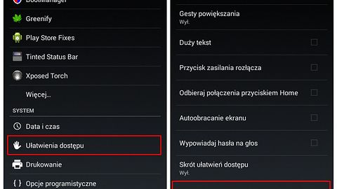 Uwolnij oczy od czytania, czyli ... zmiana tekstu na mowę od dzisiaj dostępna w języku polskim.