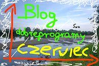 Blogi na dobrychprogramach – Czerwiec (36)