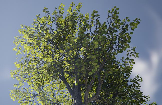 Pokaz możliwości półprzepuszczalności dzięki Foliage Shading Model