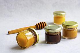 Miód słonecznikowy – właściwości i zastosowanie