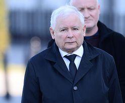 """Zdjęcie Kaczyńskiego z wakacji robi furorę. """"Nieszczęśliwy starzec"""""""
