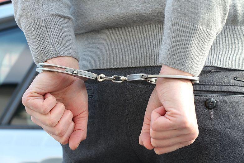 Był poszukiwany czerwoną notą Interpolu. Zatrzymany na polskiej granicy