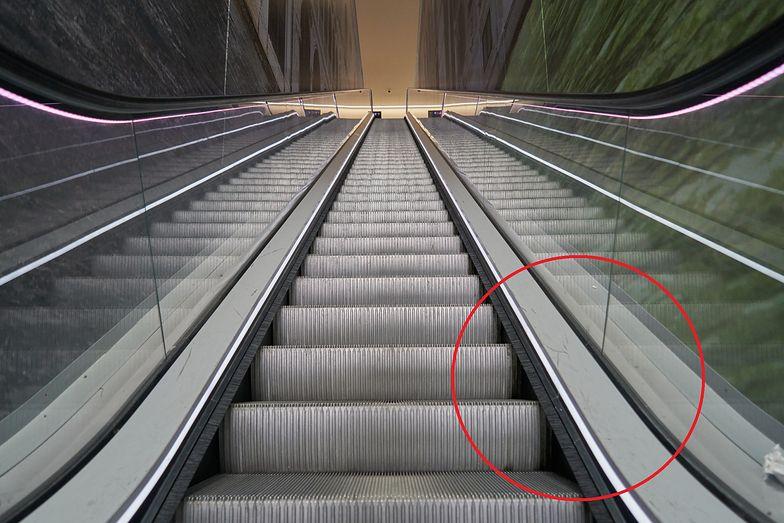 Do czego służą szczotki w ruchomych schodach? Nie chodzi o czyszczenie butów