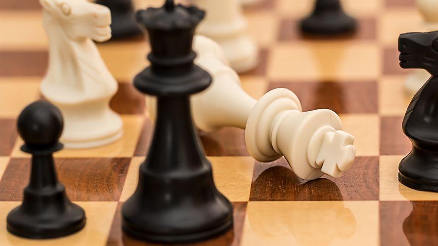 Sztuczna inteligencja pokonuje inne programy w szachy i Go