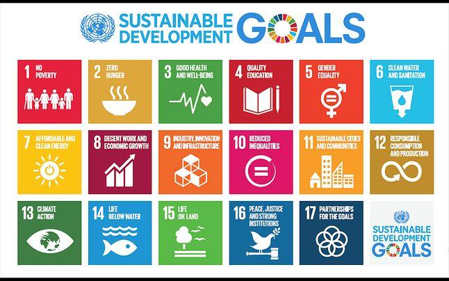 Cele Zrównoważonego Rozwoju, Organizacja Narodów Zjednoczonych