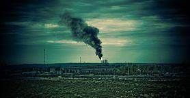 Co powinieneś wiedzieć o toksynach i zanieczyszczeniach?