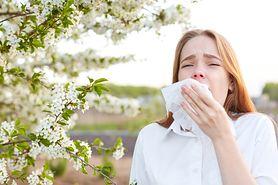 Wiosenne zmartwienia alergików